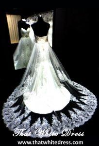 silver-1212w08-princess-mermaid-lace